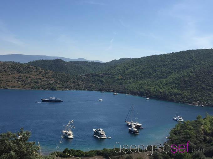 il-riccio-beach-restaurant-cennet-koyu-bodrum-dogus-dream