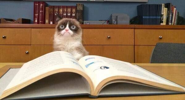 kedi-komik-kitap
