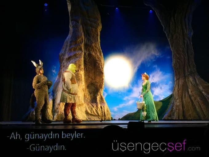 shrek-muzikali-istanbul-zorlu-psm-bilet-cocuk