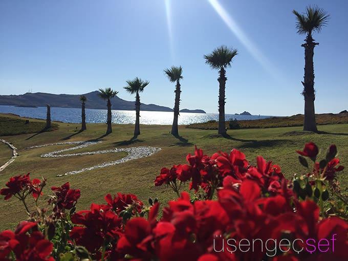 palmalife-bodrum-resort-otel-deniz-palmabeach