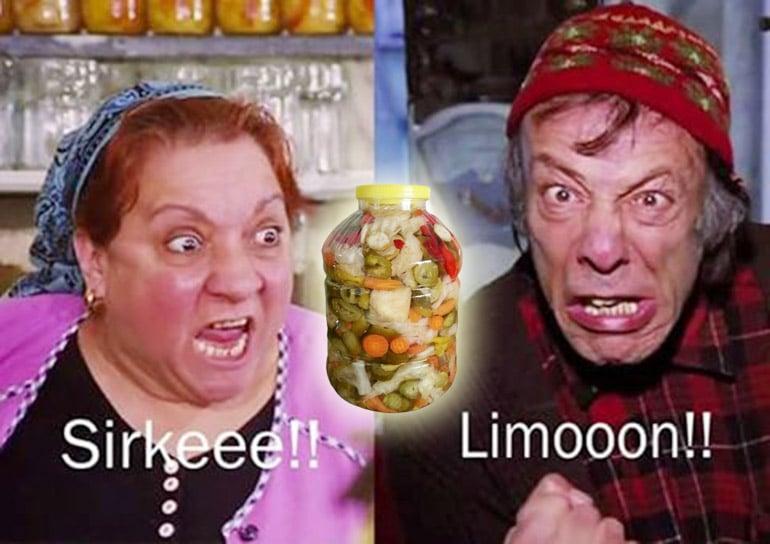 adile-nasit-munir-ozkul-vefat-tursu-sirke-limon